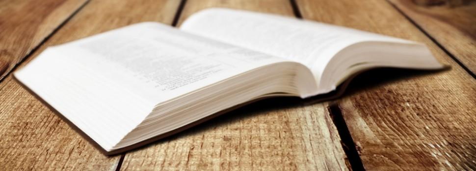 PENHORABILIDADE PERMITIDA: Bem de família oferecido em garantia pelo devedor pode ser objeto de penhora